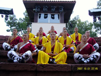 China Shaolin Kung fu Performance team