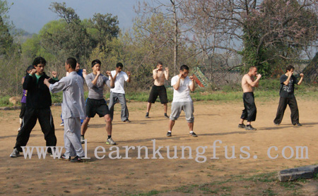 Chinese kickboxing Sanda training