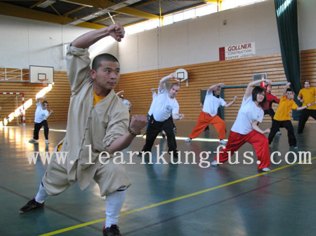 Master teaching kung fu in Italy